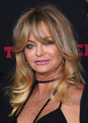 Goldie Hawn - The Hateful Eight Premiere @ ArcLight Cinemas Cinerama Dome in Hollywood - 12/07/15