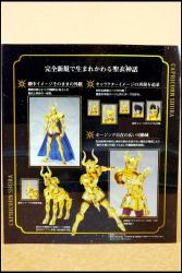 [Luglio 2013] Saint Cloth Myth EX Capricorn Shura - Pagina 10 AbsL7ILW
