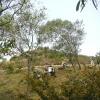 水長流 2012-09-22 AbvlRqK5