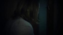 Cichy dom / La Casa Muda / Silent House (2010) PL.DVDRip.XviD.AC3-TWiX   Lektor PL