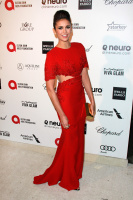 23rd Annual Elton John AIDS Foundation Academy Awards Viewing Party (February 22) Mz6Mlsoc