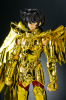 Sagittarius Seiya Gold Cloth ActKqPzA