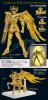 Sagittarius Seiya Gold Cloth AcmPKxYa