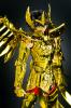 Sagittarius Seiya Gold Cloth AbmyNkhr