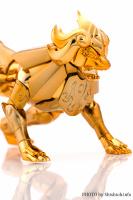 Leo Aiolia Gold Cloth ~Original Color Edition~ AbyfrTJu