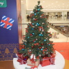 Merry Christmas and Happy New Year BCTgE0SJ