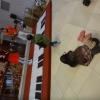 Interactive piano stage IEbwBzlg