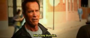 Likwidator / The Last Stand (2013) PLSUBBED.720p.CAM.XViD.AC3-J25 | Napisy PL +RMVB +x264