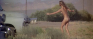 Lauren Hutton, Linda Gaye Scott @ Little Fauss and Big Halsy (US 1970)  Is4qMIP3