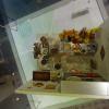 Miniature Exhibition 祝節盛會 Abf95d9p