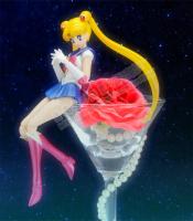 Goodies Sailor Moon - Page 2 AdlGArtg