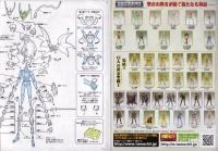 Dragon Shiryu God Cloth ~ Original Color Edition ~ Aci8LquA
