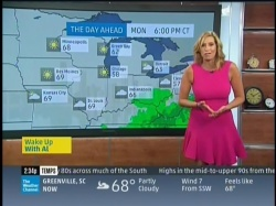 Stephanie Abrams Hot Pink Dress (MQ) 6/1
