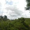 Hiking Tin Shui Wai - 頁 5 QYd2jQC0