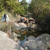 鯉魚擺尾 2012-02-11 Hiking - 頁 2 GOtSI6mJ