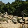 鯉魚擺尾 2012-02-11 Hiking - 頁 2 CgCEHl3S