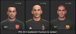 Download PES 2014 Goalkeeper Facepack by sunbast