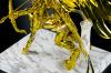 Sagittarius Seiya Gold Cloth AbrzijTc