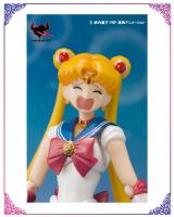 Goodies Sailor Moon AbyW574Y