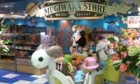 One Piece Store in Tokio Abxd6gOd