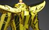 Sagittarius Seiya Gold Cloth AbvNgSdN