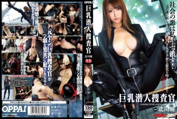 [PPPD-317] Kitagawa hitomi - Busty Undercover Investigation