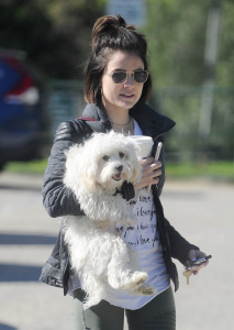 Lucy Hale - Walking Her Dog Out in Los Angeles - February 24th 2017