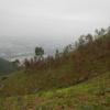 菜園村 圭角山  - 頁 2 PL5hETRg