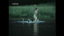 neznámé nahé - Matěji, proč tě holky nechtějí? HD - 9