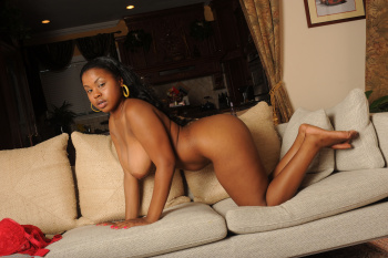 232368 - Laylani Star thick women