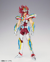 [Novembre 2013] Saint Cloth Myth Ω Pegasus Kouga - Pagina 3 Acqr0o7c