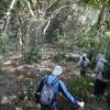 跳蛙 2012-01-07 Adz9WHo6