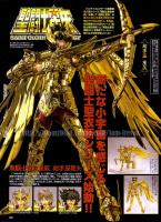 Sagittarius Seiya Gold Cloth Acui1tI7