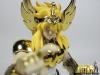 Cygnus Hyoga New Bronze Cloth ~ Power of Gold Acu6TEGz