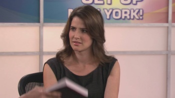 "Cobie Smulders - How I Met Your Mother S05 E17 ""Cleavage"" 