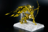 Sagittarius Seiya Gold Cloth AdcZNpFF