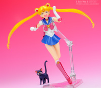 Goodies Sailor Moon - Page 2 Acq9VDR3