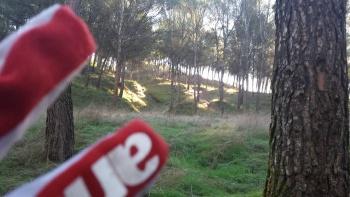 08/01/2017 parque de los cerros Alcalá de Henares. 09:00h. XEED5i8J