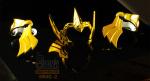 [Agosto 2012]Saint Cloth Myth EX Sagitter Aiolos - Pagina 24 AchRx0BF