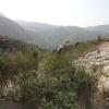 鯉魚擺尾 2012-02-11 Hiking - 頁 2 0986gmo1