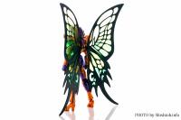 Papillon Myû Surplice - Page 2 AcmvZihm