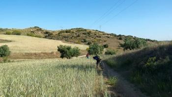 31/05/2015 - Propuestas gay-eteras... Morata-Tielmes-Arganda: 40km Ruta de las fuentes Jj4IVYBW