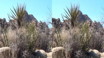 Americas Southwest (2012) 1080p.BluRay.3D.H-SBS.DTS.x264-Public3D