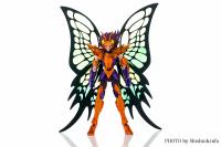 Papillon Myû Surplice - Page 2 Adr7kzJC