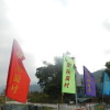 錦上荃灣 2013 February 23 AdpQjjYa
