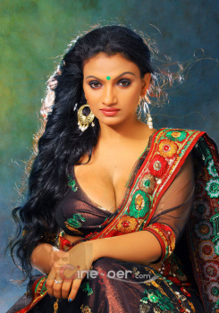 Mallu Serial Actress Krishna Prabha Hot Navel