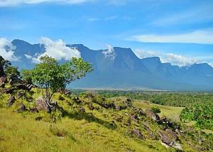 Cerro Marahuaca
