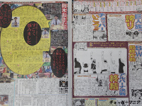 One Piece Zeitung AdizwPCk