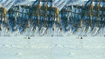Imax To The Arctic (2012) 3D.1080p.BluRay.HSBS.x264.ML-zman