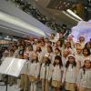 Kowloon Junior School PS2e8aC2